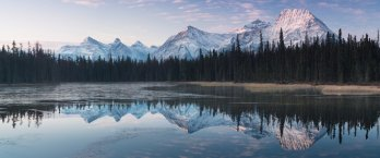 Jagged, snowcovered Alaskan mountains and boreal forest reflected in still waters of lake in foreground.