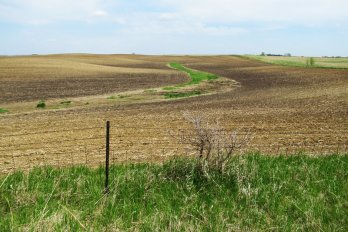 A brown parched field in corn country.